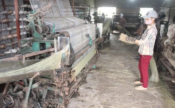 Làng Nam Hải (Thái Bình)